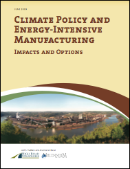 Climate Policy and Engery-Intensive Manufacturing